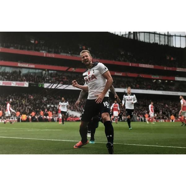 Harry Kane signed 12x8 Tottenham photo