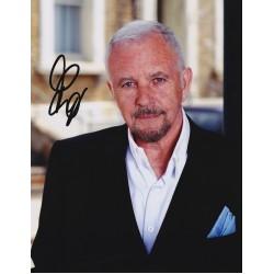 David Essex signed photo ( image A )